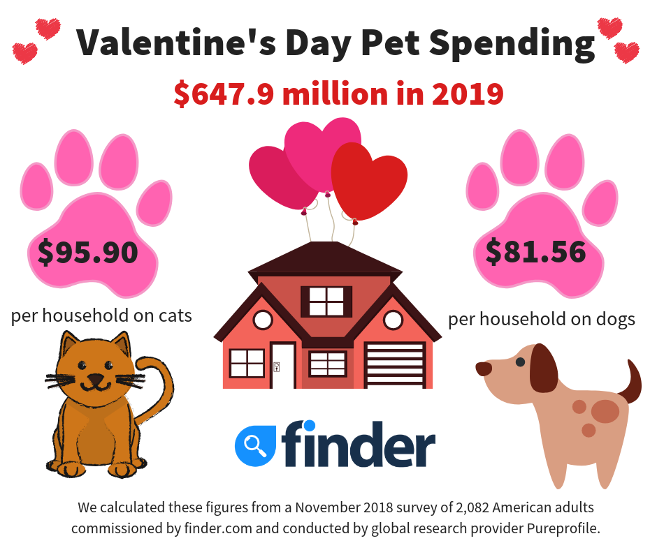 Valentine's day Marketing Offers for Pets