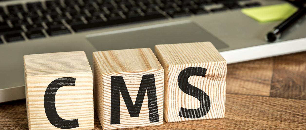 CMS 101 - What is It, and How Do You Pick One?