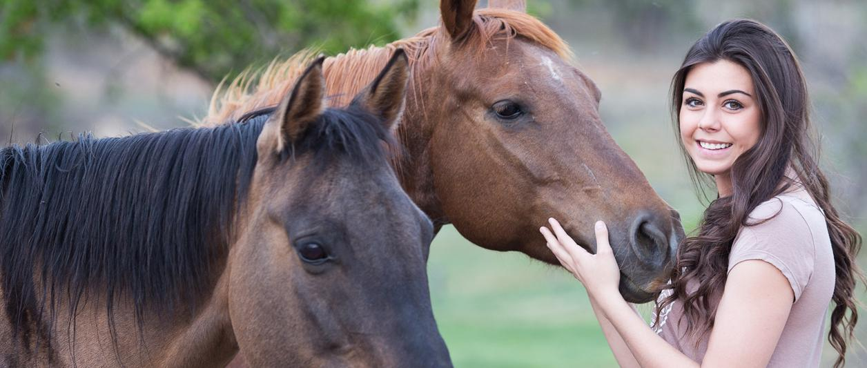 HAVES FOR EVERY EQUESTRIAN WEBSITE DESIGN